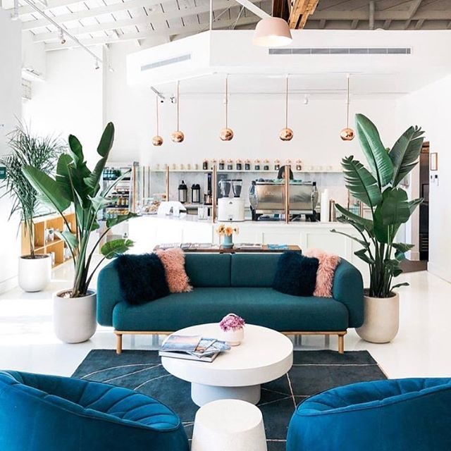 You'll find me on the weekends working on my house...............but from this space. It makes me want to go home and start painting all the walls and floors white. . . . . . . . #bayareabloggers #bayareamoms #foxandkit #interiordecor #interiordesign #interiores #chairporn #coffeehouse #coffeeshop #sanrafael #decordeinteriores #designerlove #designhunter #interiorhunter #scandanaviandesign #designjunkie