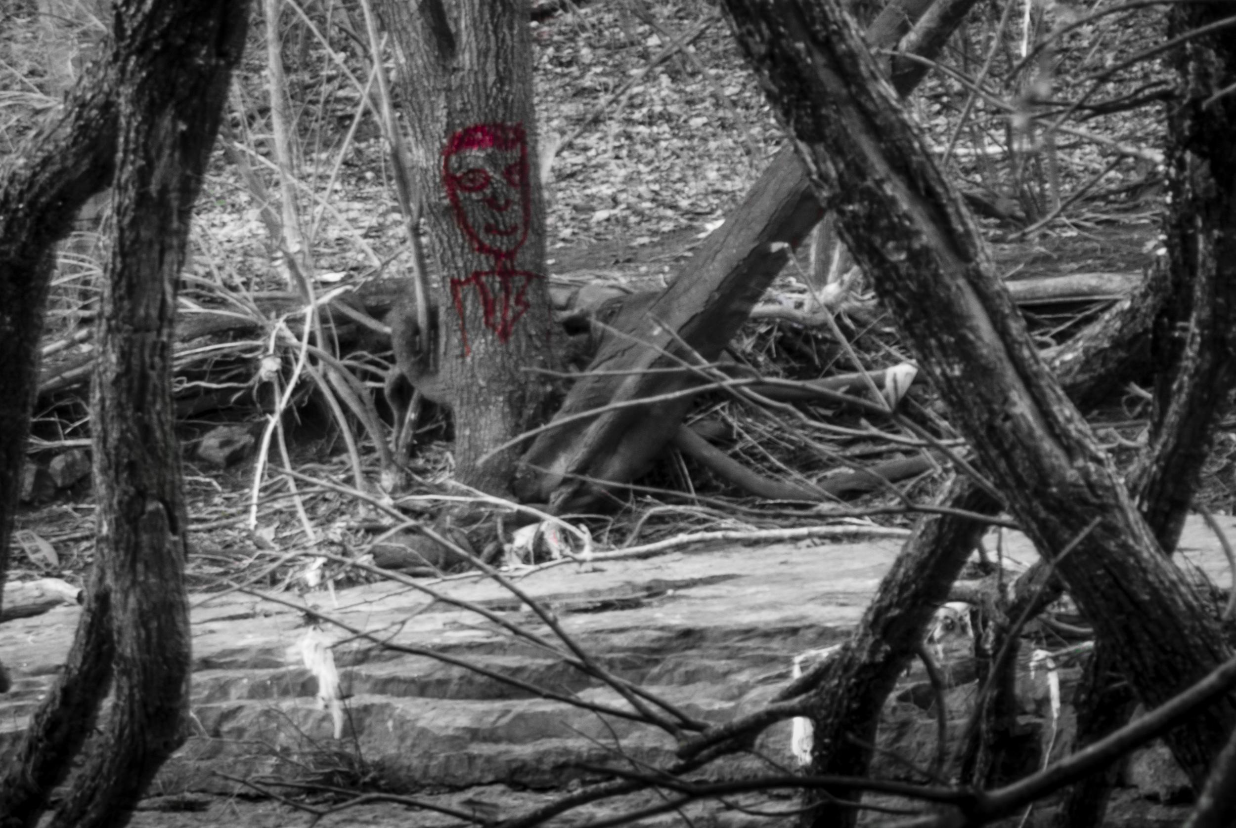 Creek-27.jpg