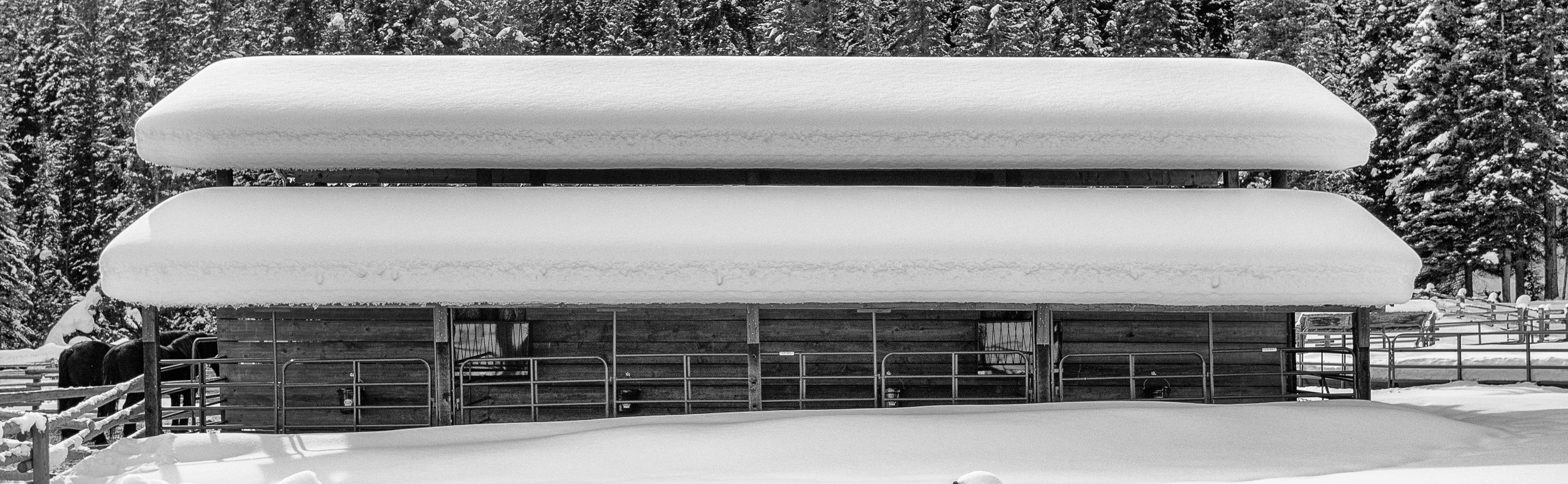 Montana-073-Edit.jpg