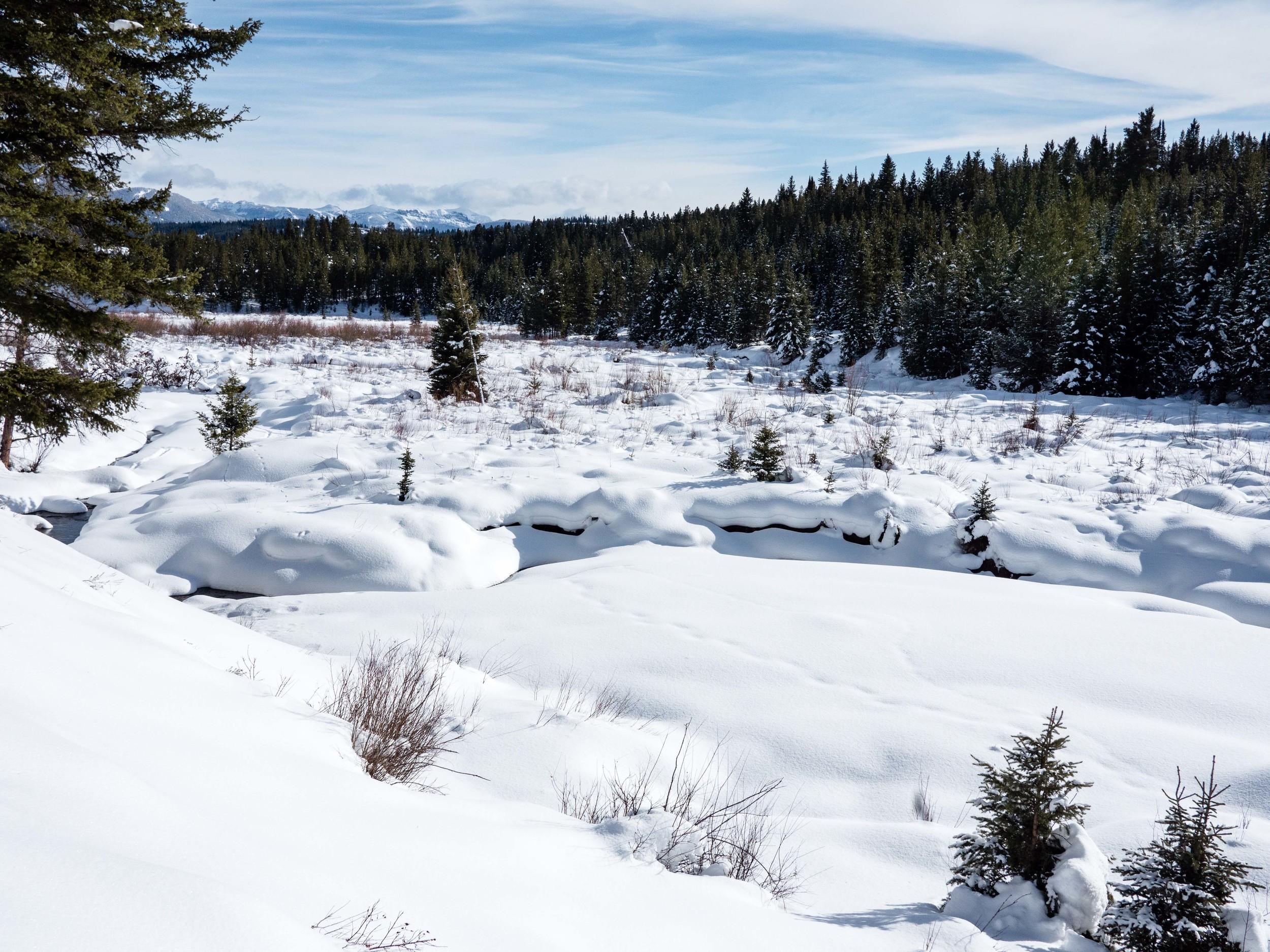 Montana-664.jpg