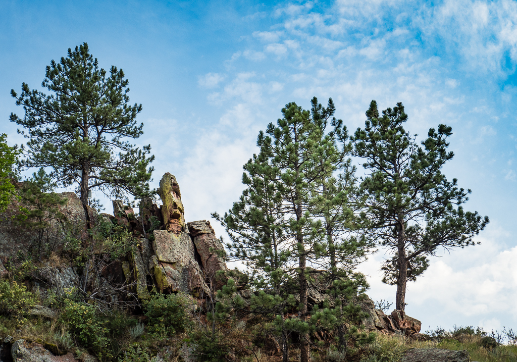Boulder20170722-137.jpg