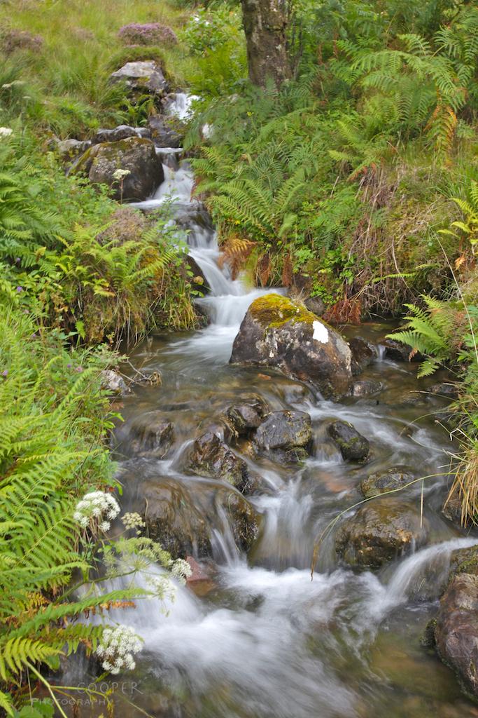 Mountain stream, Glen Shiel