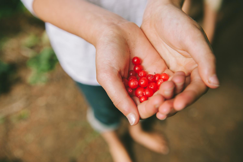 berries_garden_hands