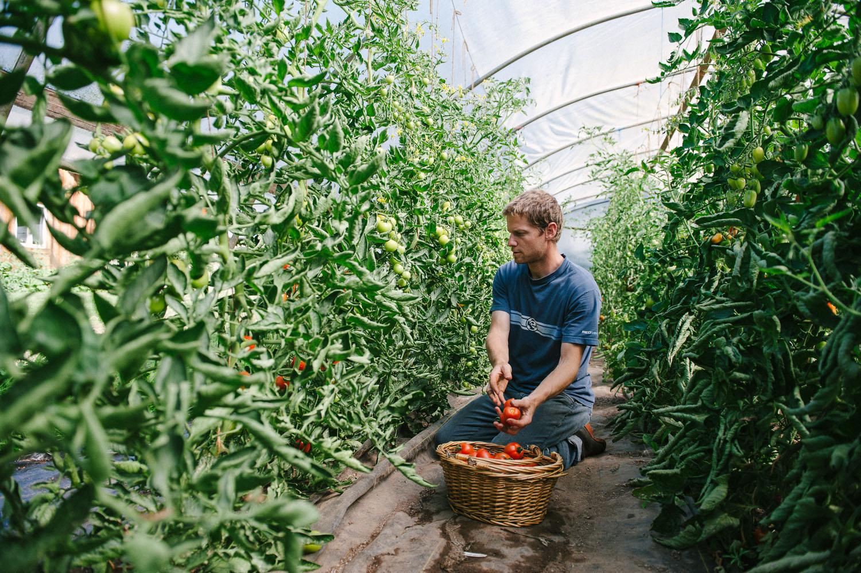 Farming_portrait