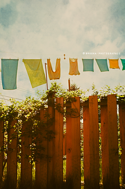summer, clothesline, vancouver, spring, whimsical