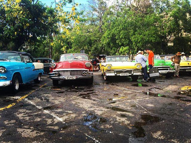 Missing those Cuba colors #Havana #cuba #travel #travelphotography #iphoneonly #latergram