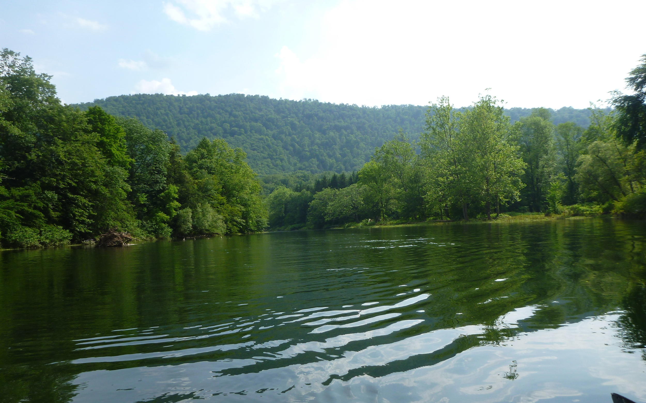 The Delaware River - East Branch out the front door of the cabin. Amazing fishing.