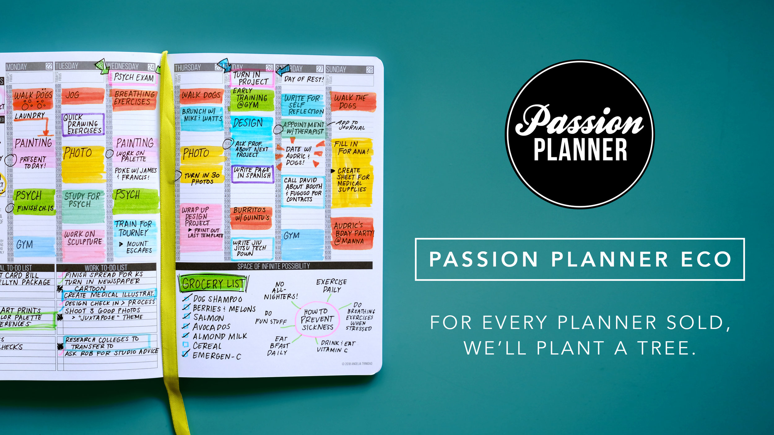 Passion Planner Eco