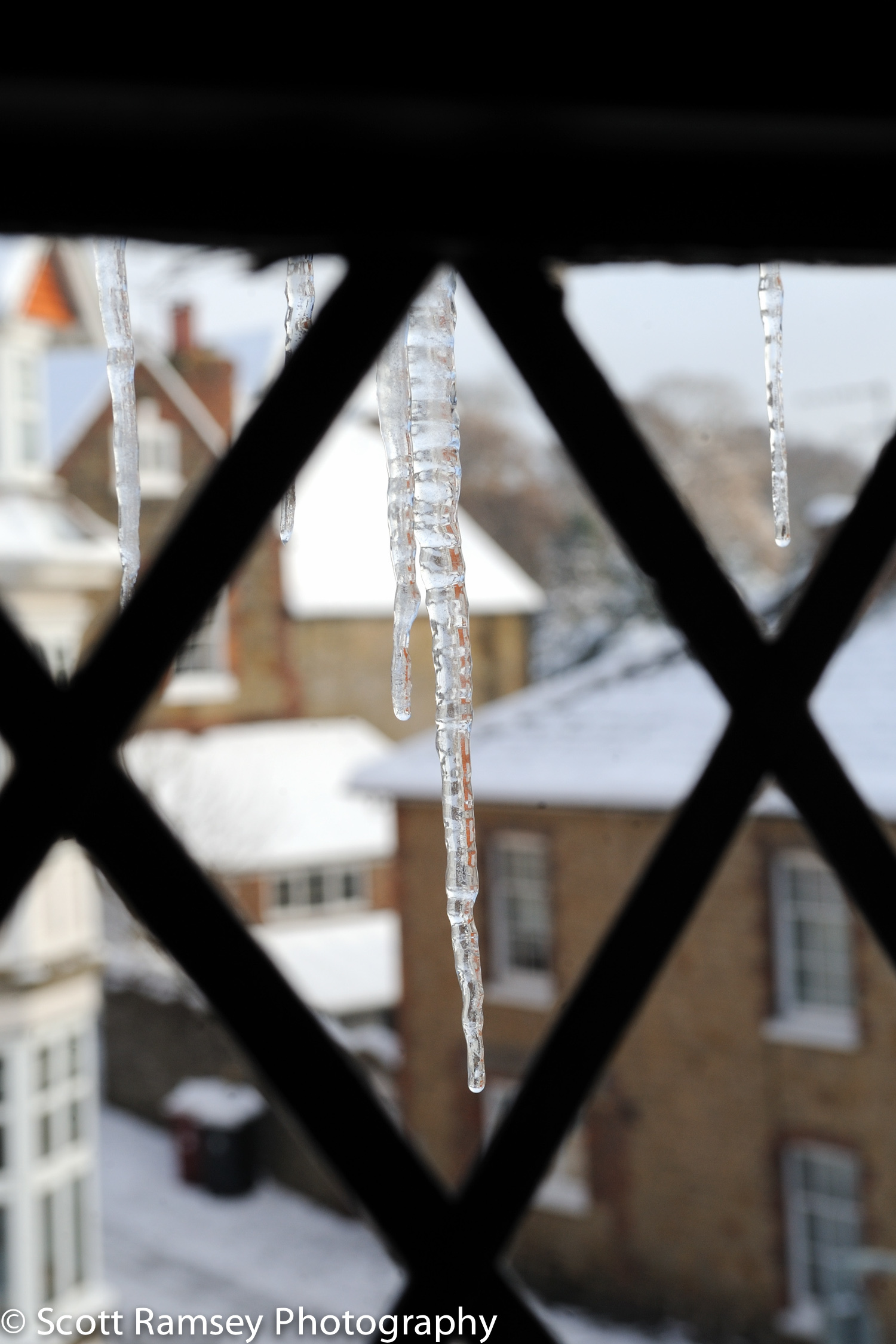 Winter-Wedding-Spread-Eagle-Hotel-Midhurst-icicles-031210-0062