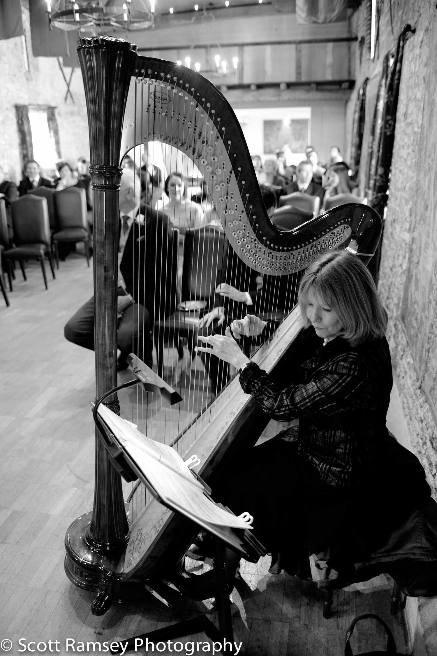 Winter-Wedding-Spread-Eagle-Hotel-Midhurst-Harpist-Ceremony-0312