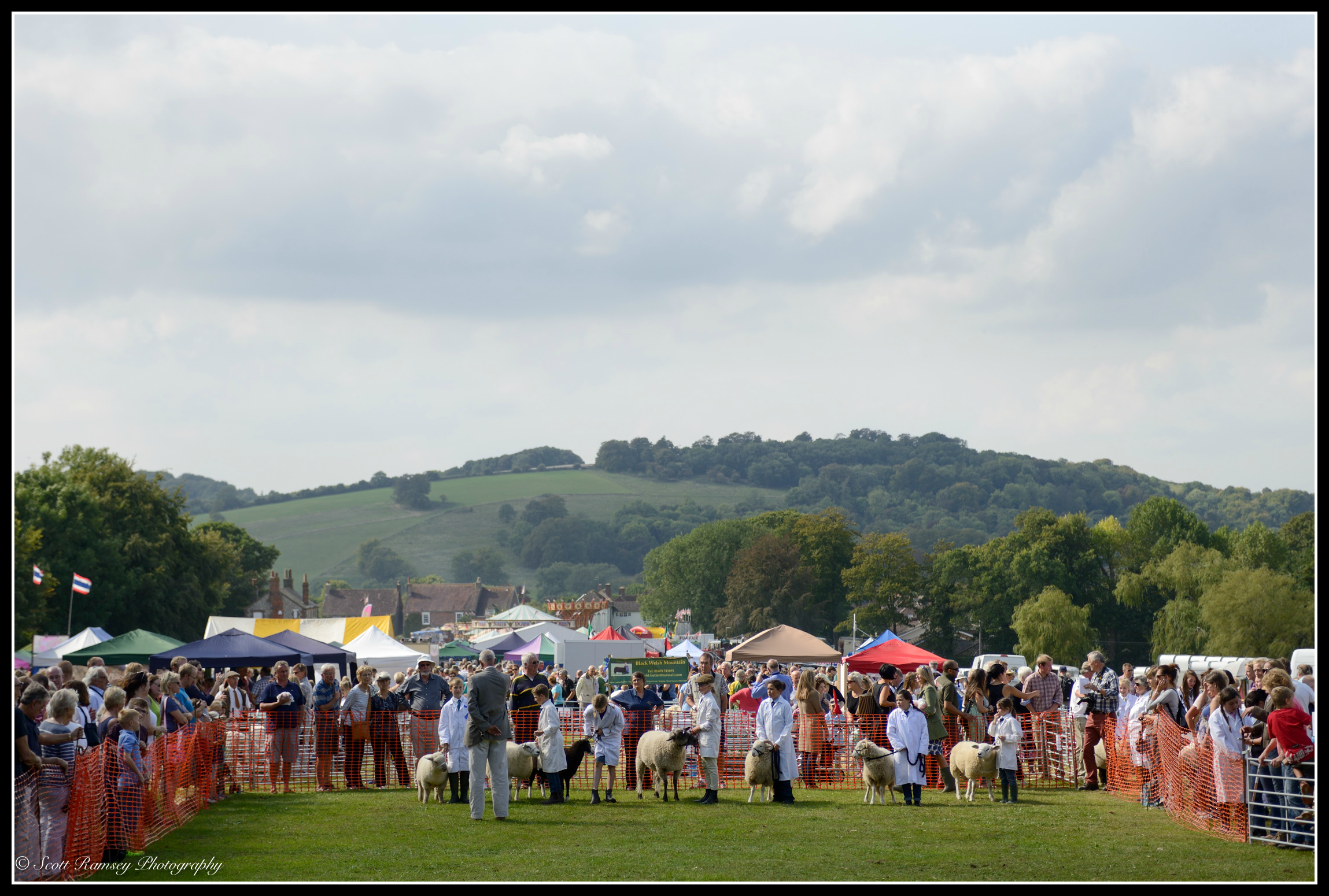 Findon Sheep Fair and Village Festival. The beautiful South Downs can be seen in the background of the photograph as   competitors try to control their sheep whilst being judged in the main arena at the show.