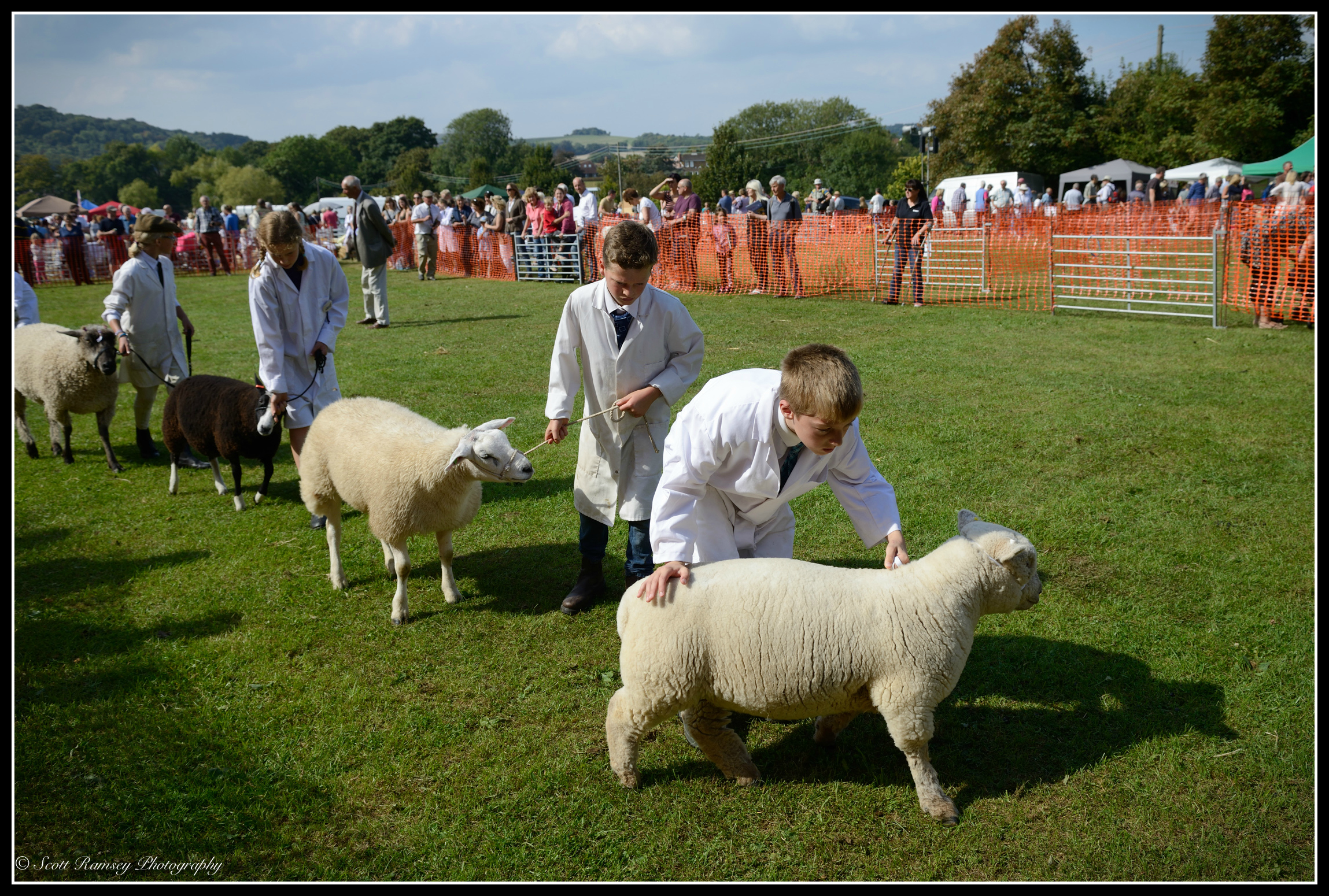 A sheep needs some encouragement to keep moving as children parade sheep around the main arena at the Findon Sheep Fair in West Sussex.