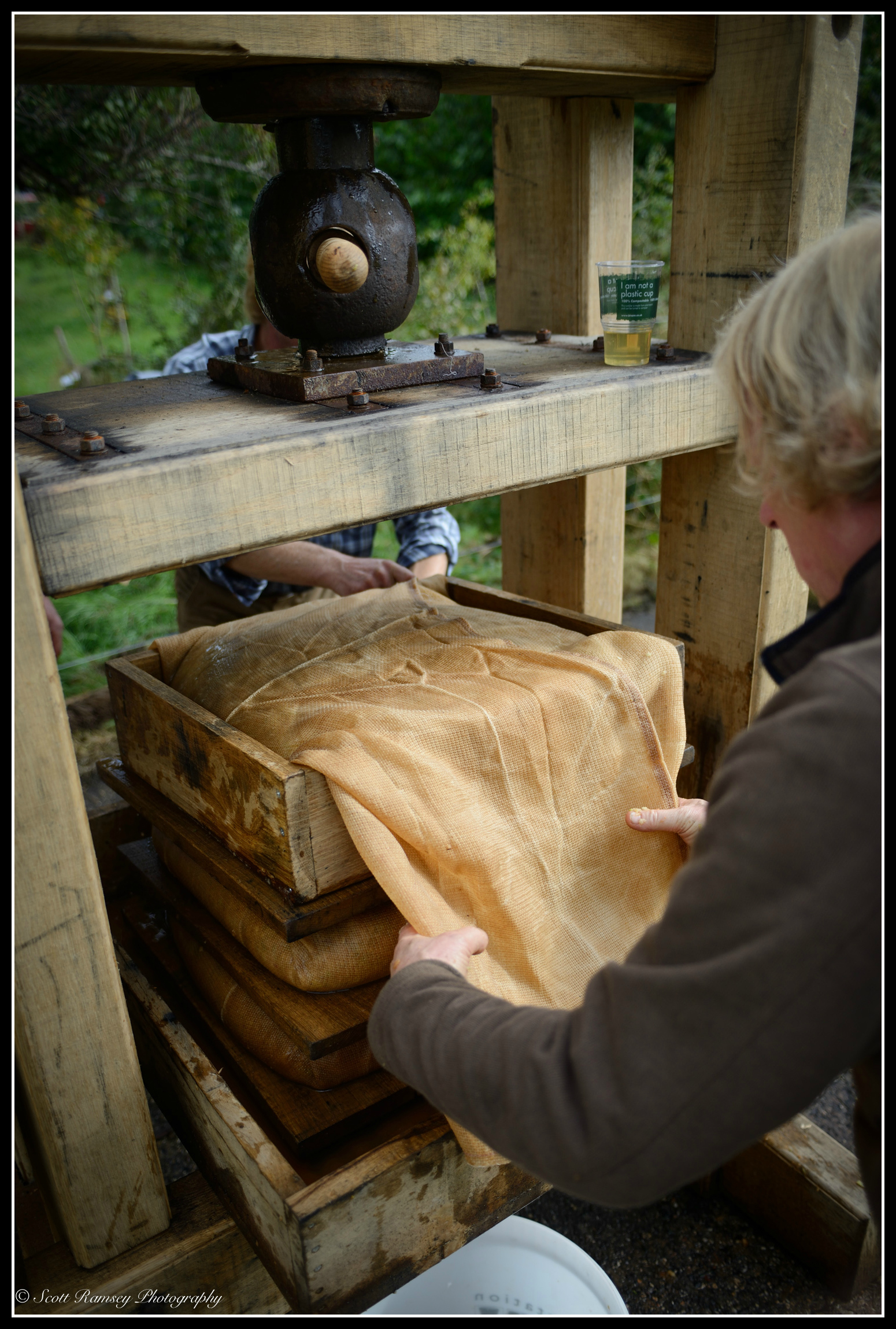 Two volunteers stack and then wrap apples in hessian cloth on a  traditional rack and cloth oak cider press called 'Big Bertha'.