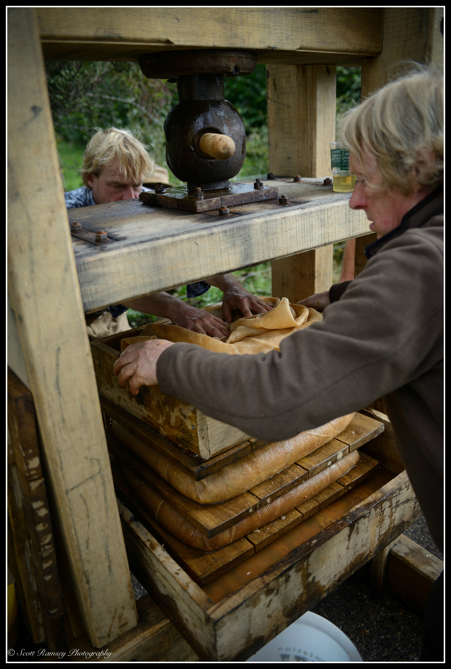 The final layer of apples is wrapped in hessian cloth and loaded onto the apple  press.