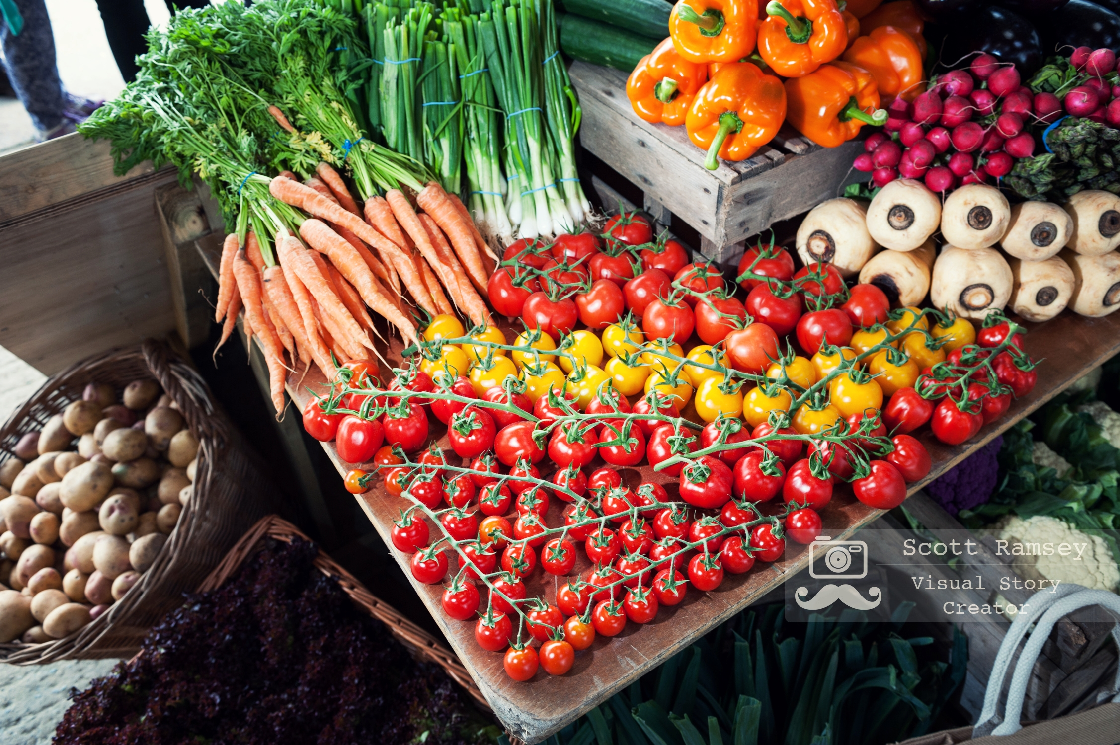 Tomatoes, carrots and other fresh produce from Sussex farms on display at the 2017 South Of England Show. Photo © Scott Ramsey
