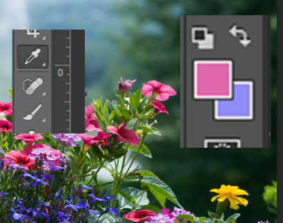 flowers and snip.PNG