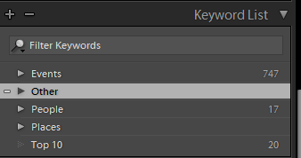 Top Level Keywords.PNG