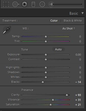 Basic Panel adjustments