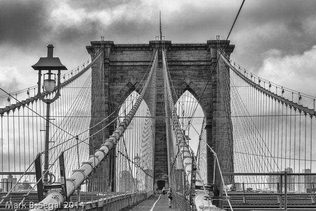 Brooklyn Black and White