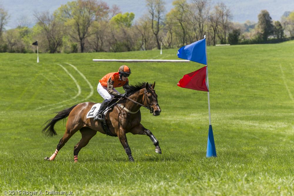 Horse racing in Virginia