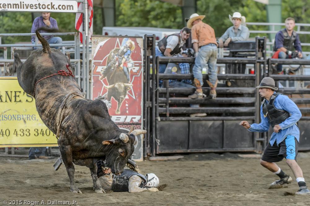 Bull Rider Faceplant