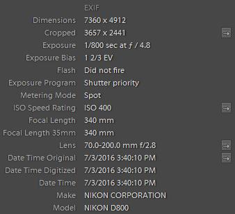 Camera EXIF data