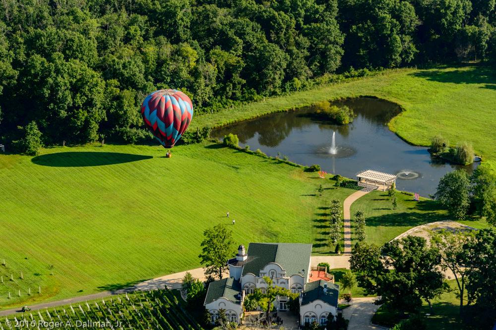 Convenient - landing the balloon next to a vineyard