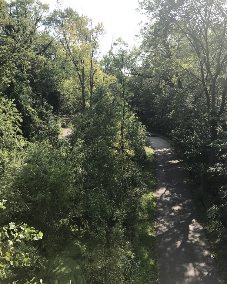 Amazing bike trail that hugs the creek for miles