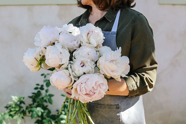 Goodbye peony season—hello summer!! If we had these beauties all year round, we might not appreciate them as much. . Image: @graciebyrdjones . . . . . #peonies #peonyseason #sproutweddings #webelieveinbeauty #hillcountrywedding #austinweddings #sanantonioweddings #weddingflowers #weddingdesign #fineartwedding #fineartflorist #fineartflowers #floraldesign #flowersofinstagram #flowergram #flowerstagram #floweroftheday #flowerstalking #floralstudio #weddinginspiration
