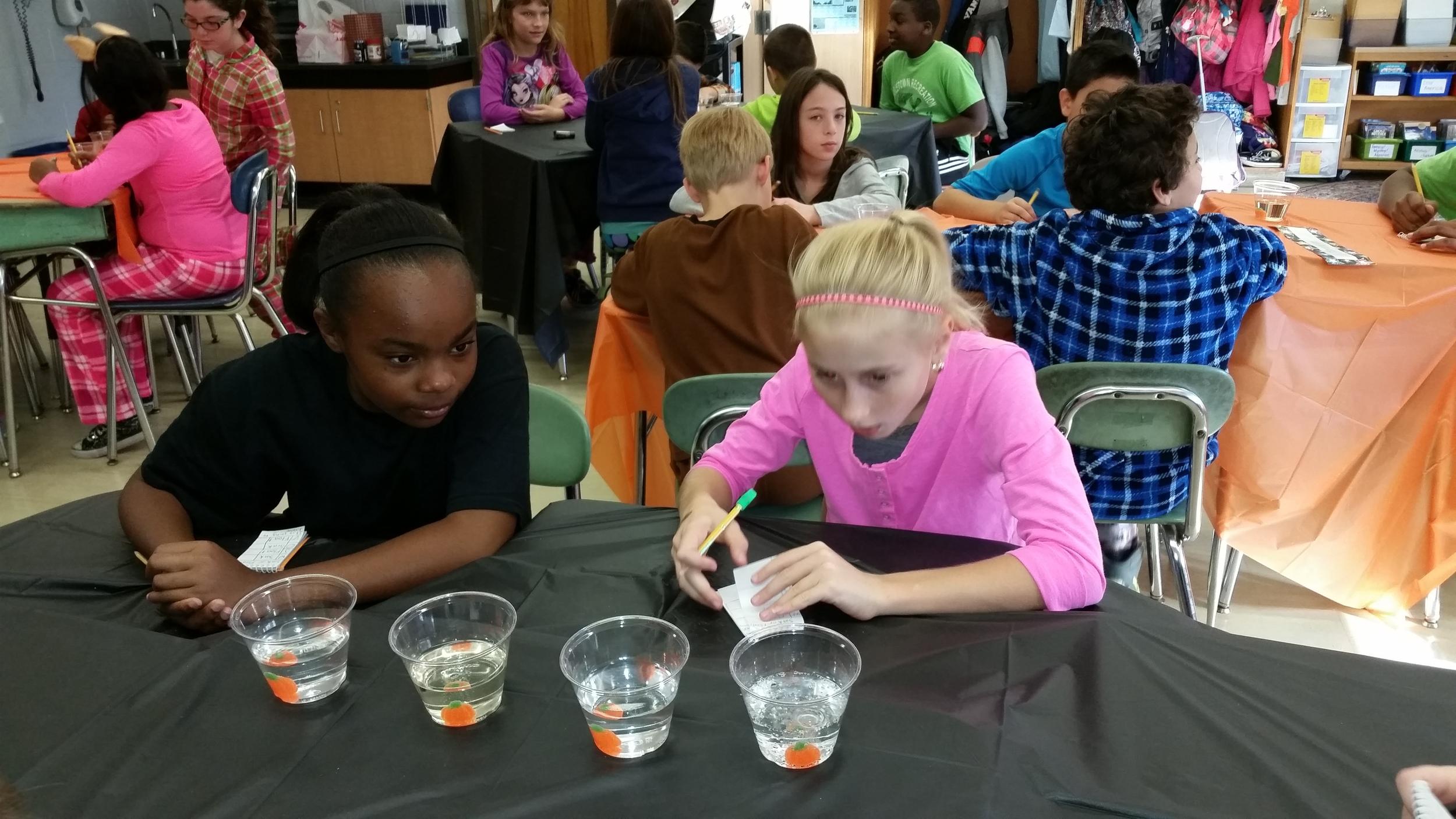 Gumdrop pumpkins: 'sink or swim' experiment