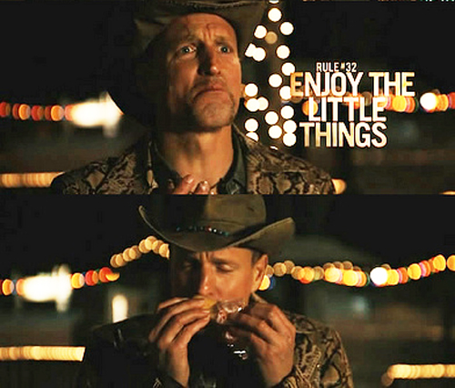 Woody Harrelson's character in Zombieland obsessed over Twinkies, a running theme in the movie.