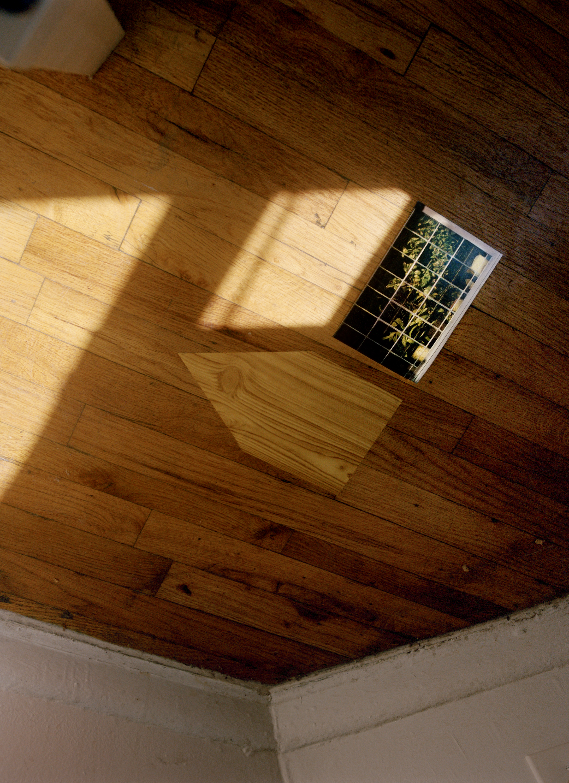 woodhousewebsitetif.jpg