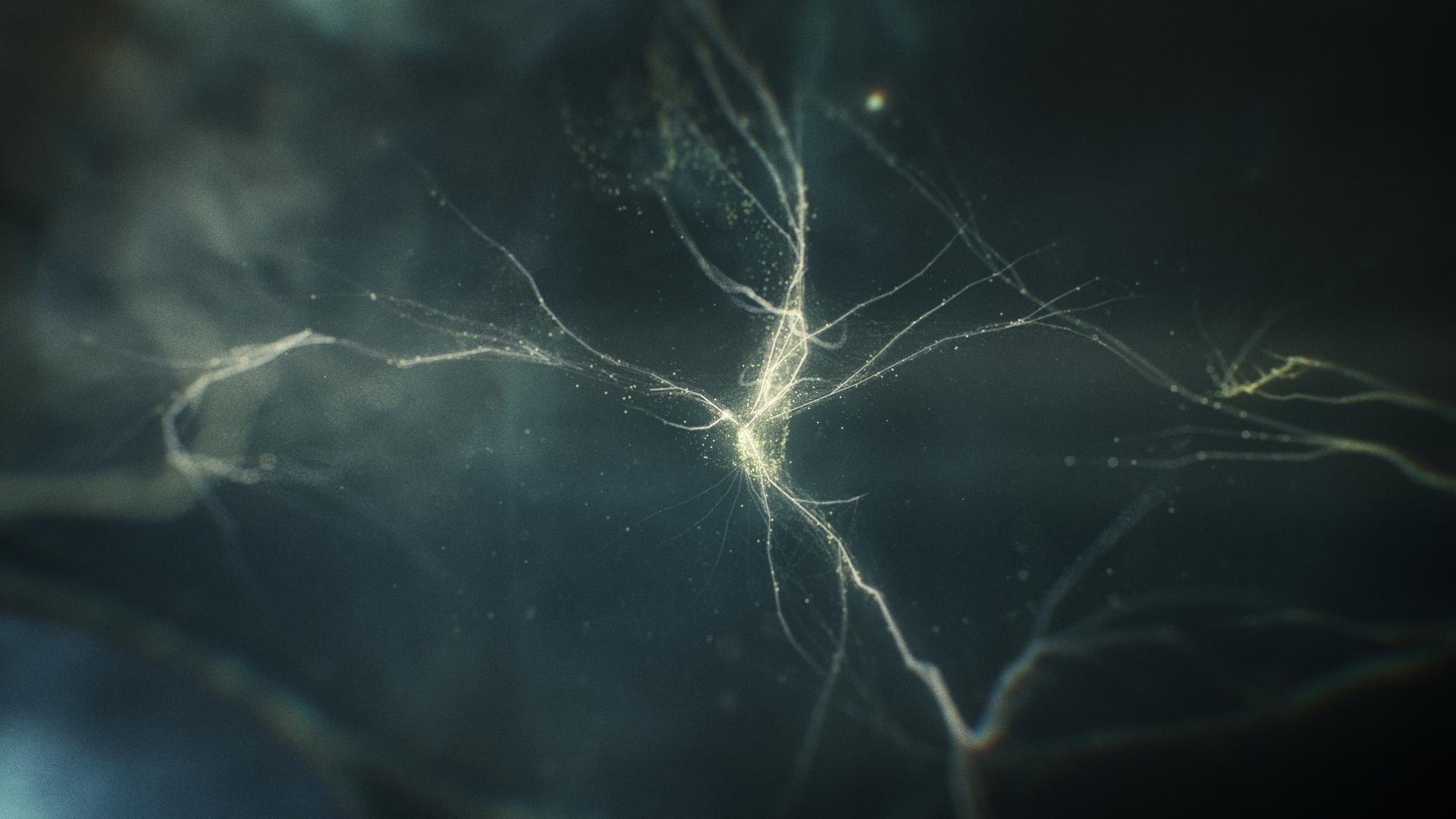 IDEO_Neuron_01_0001.jpg