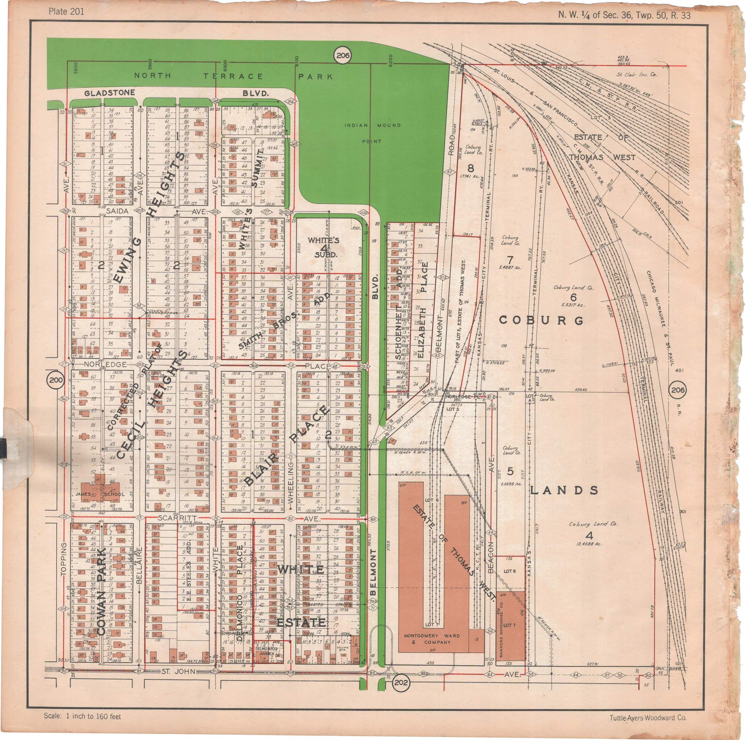 1925 TUTTLE_AYERS_Plate_201.JPG
