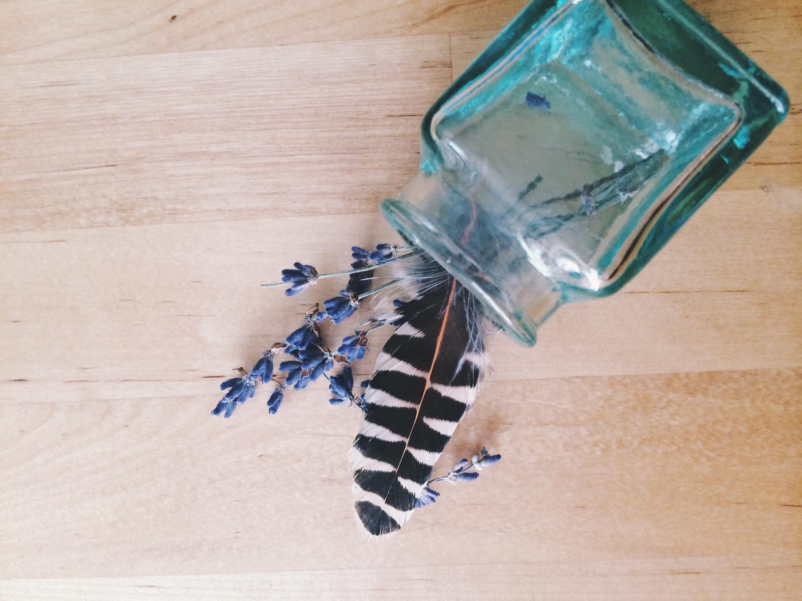 feather in a bottle.JPG