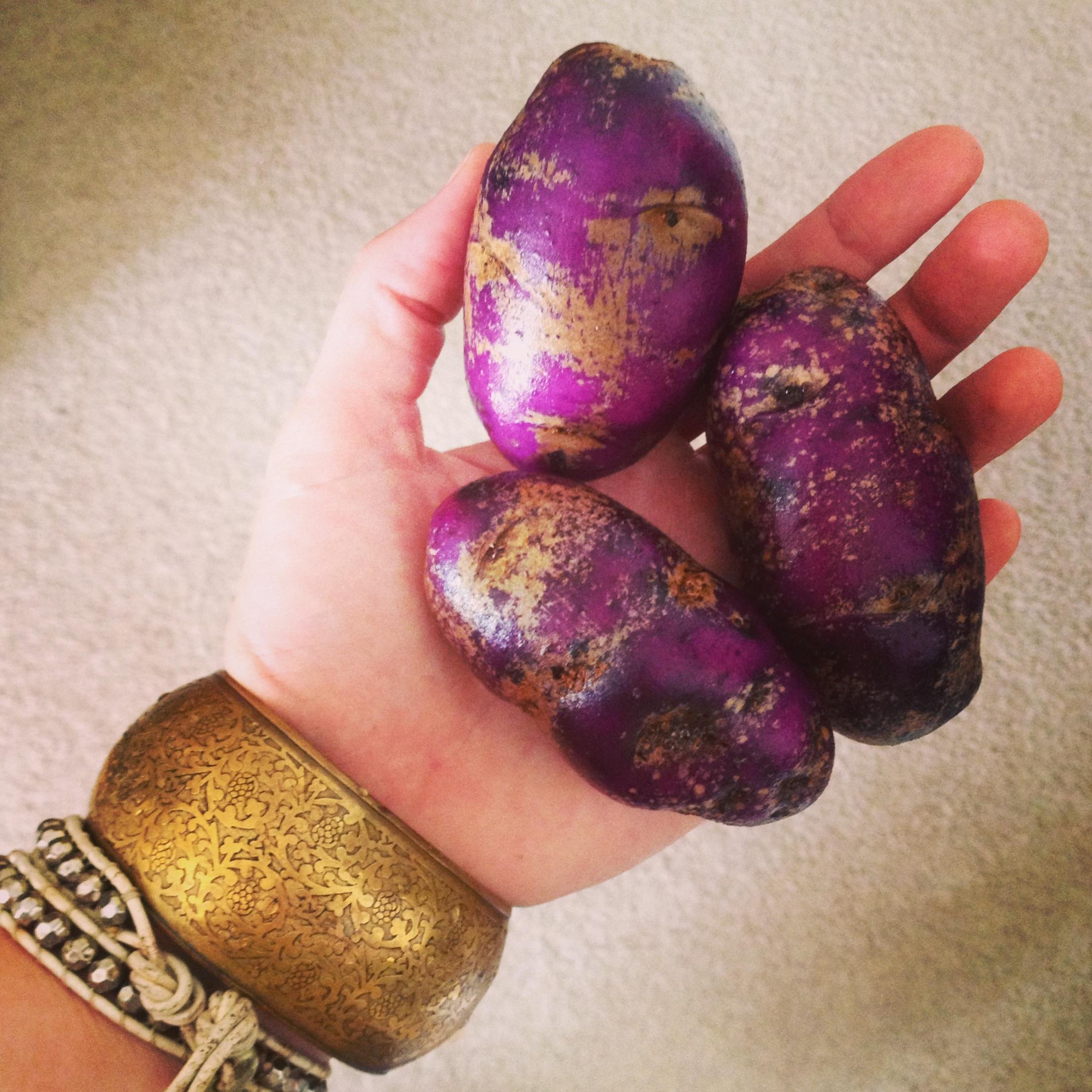 DP fall purple potatoes.jpg