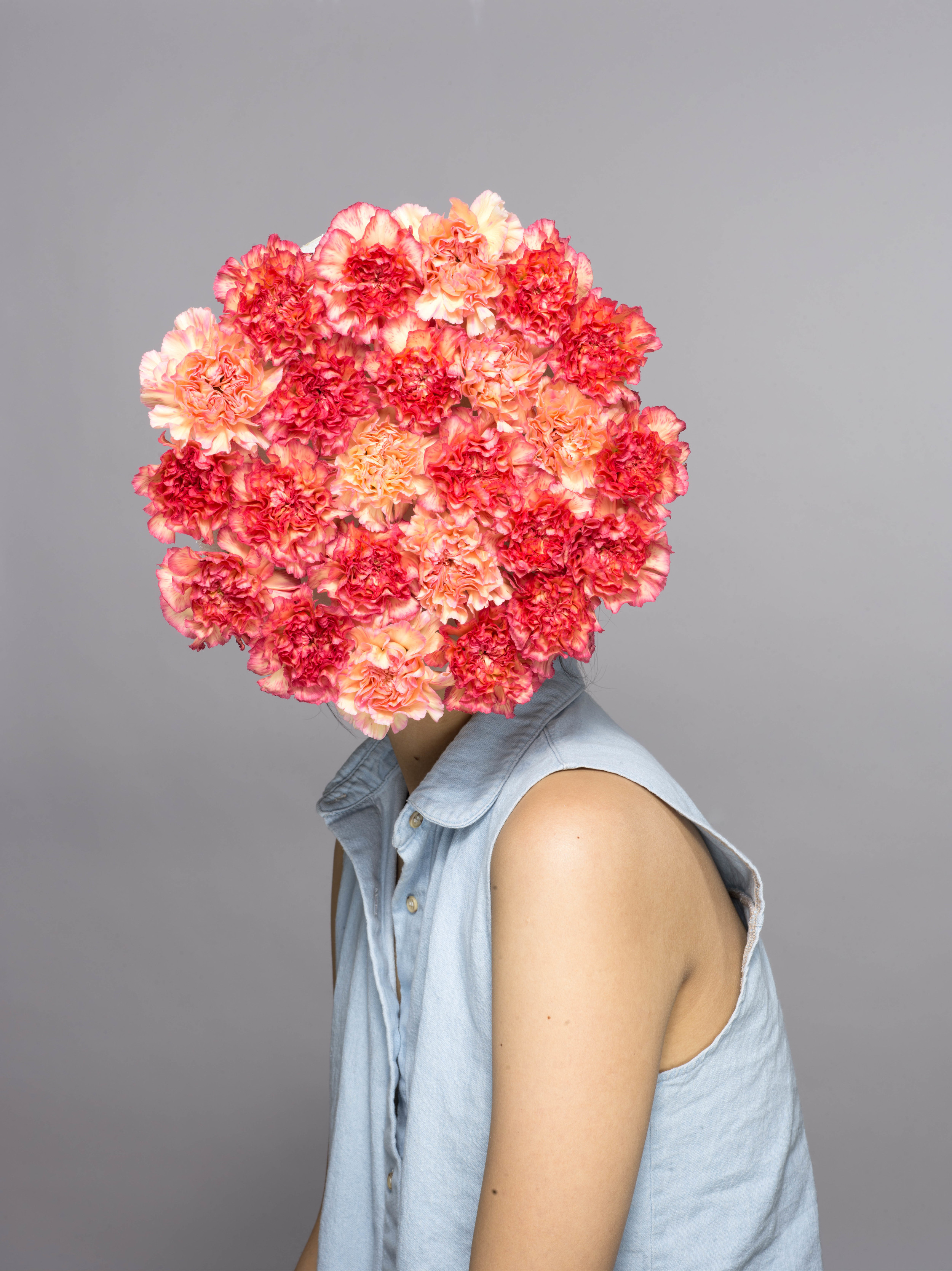 FLOWER HEADS 28803.jpg