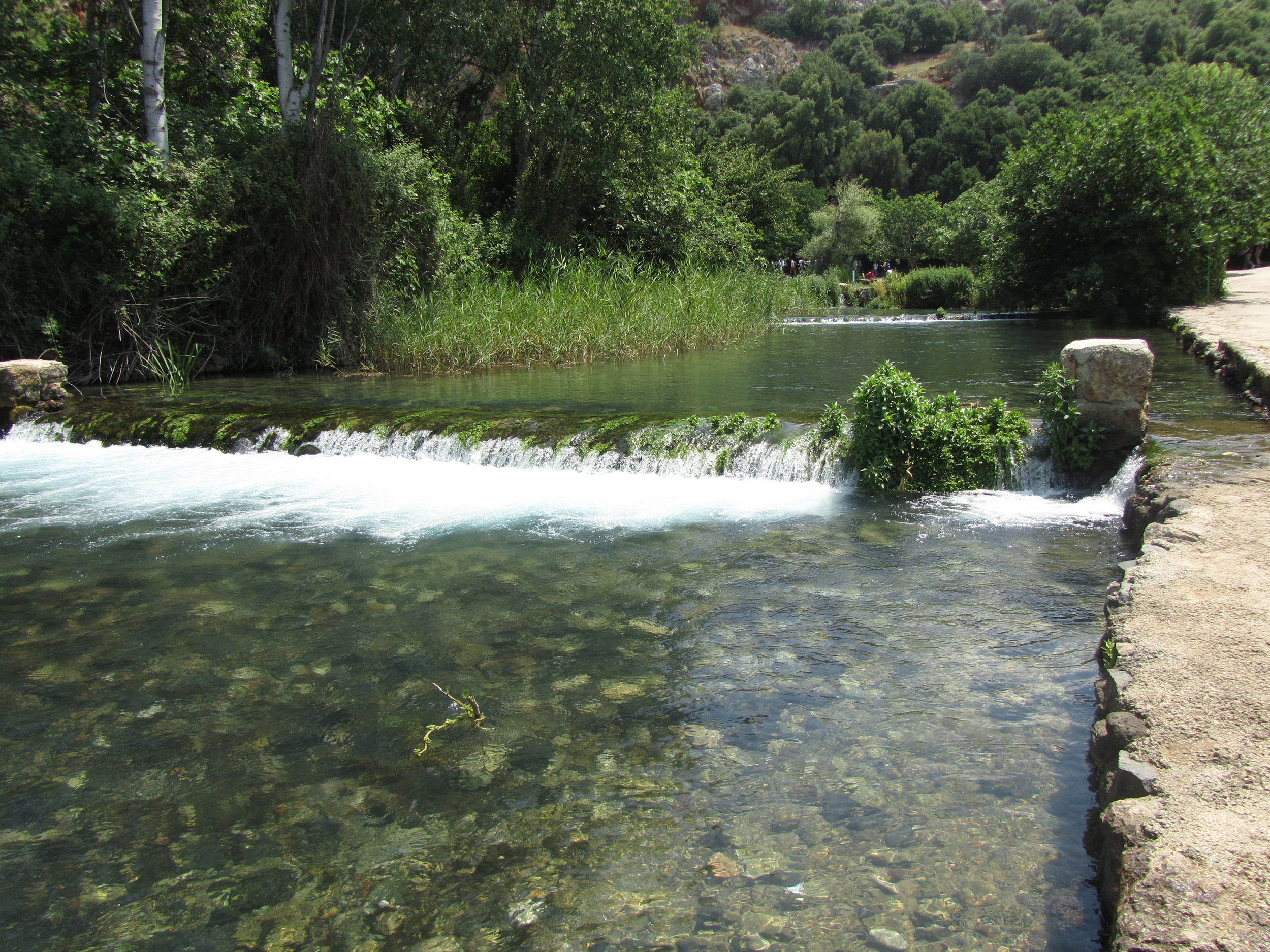 The head waters of the Jordan River flow from the spring of Banias.