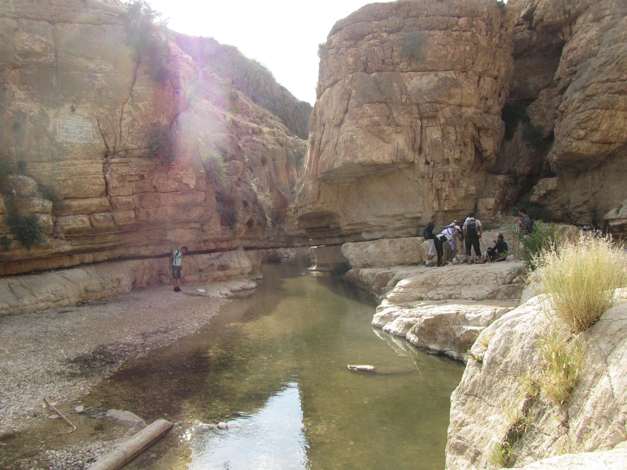 The Spring in Wadi Kelt