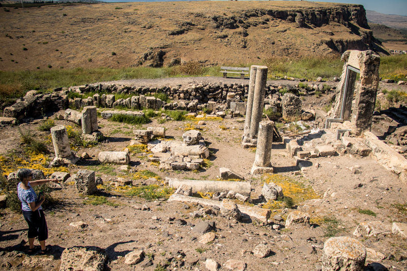 In the afternoon some of us made an extra visit to the ancient synagogue of Arbel and made some fascinating discoveries.
