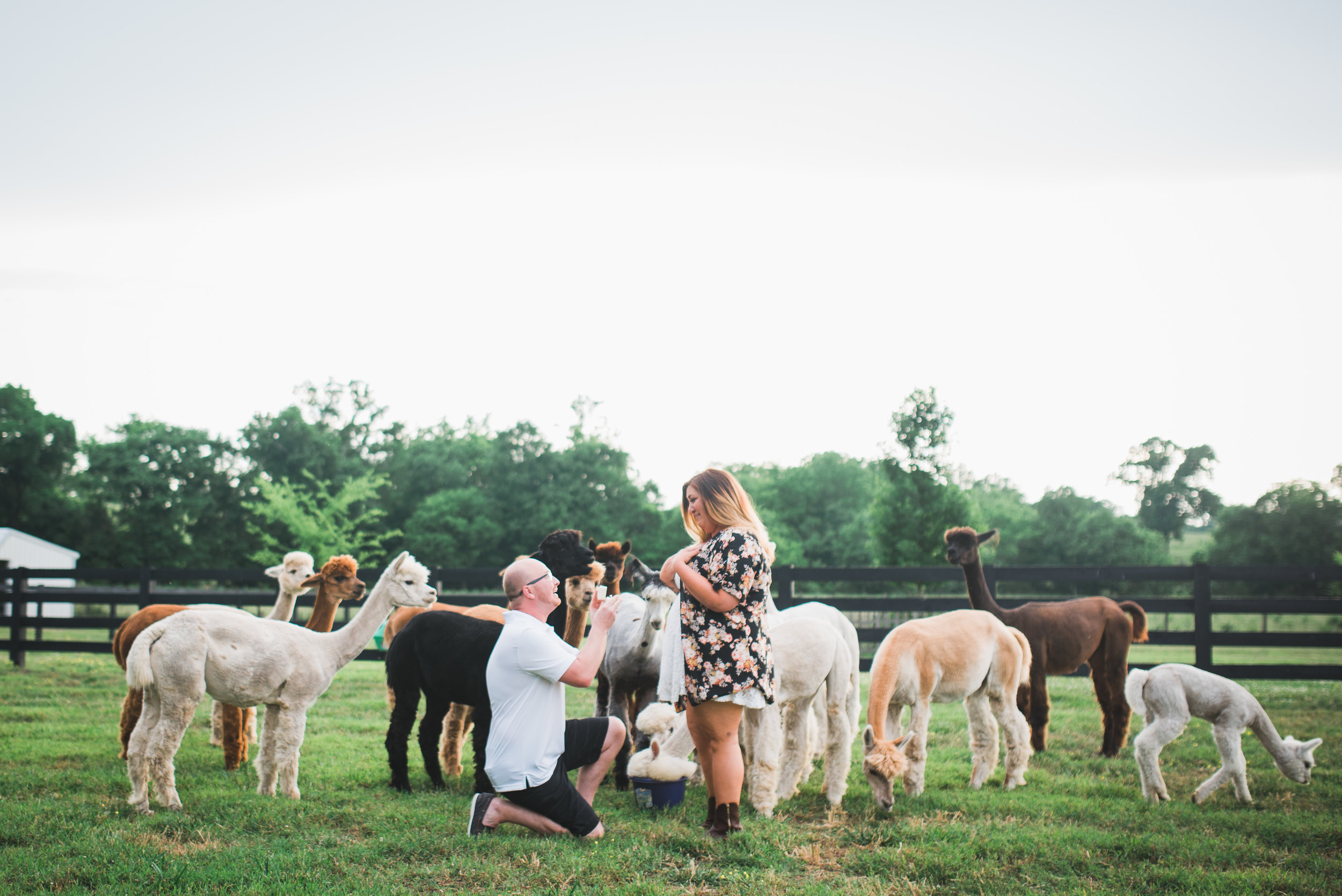 Nashville-Wedding-Photographer-Favorites36.jpg