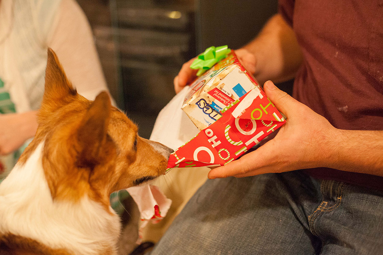 HomemadeGingerbreadHouse-Christmas2014-HeidiRandallStudios-17.jpg