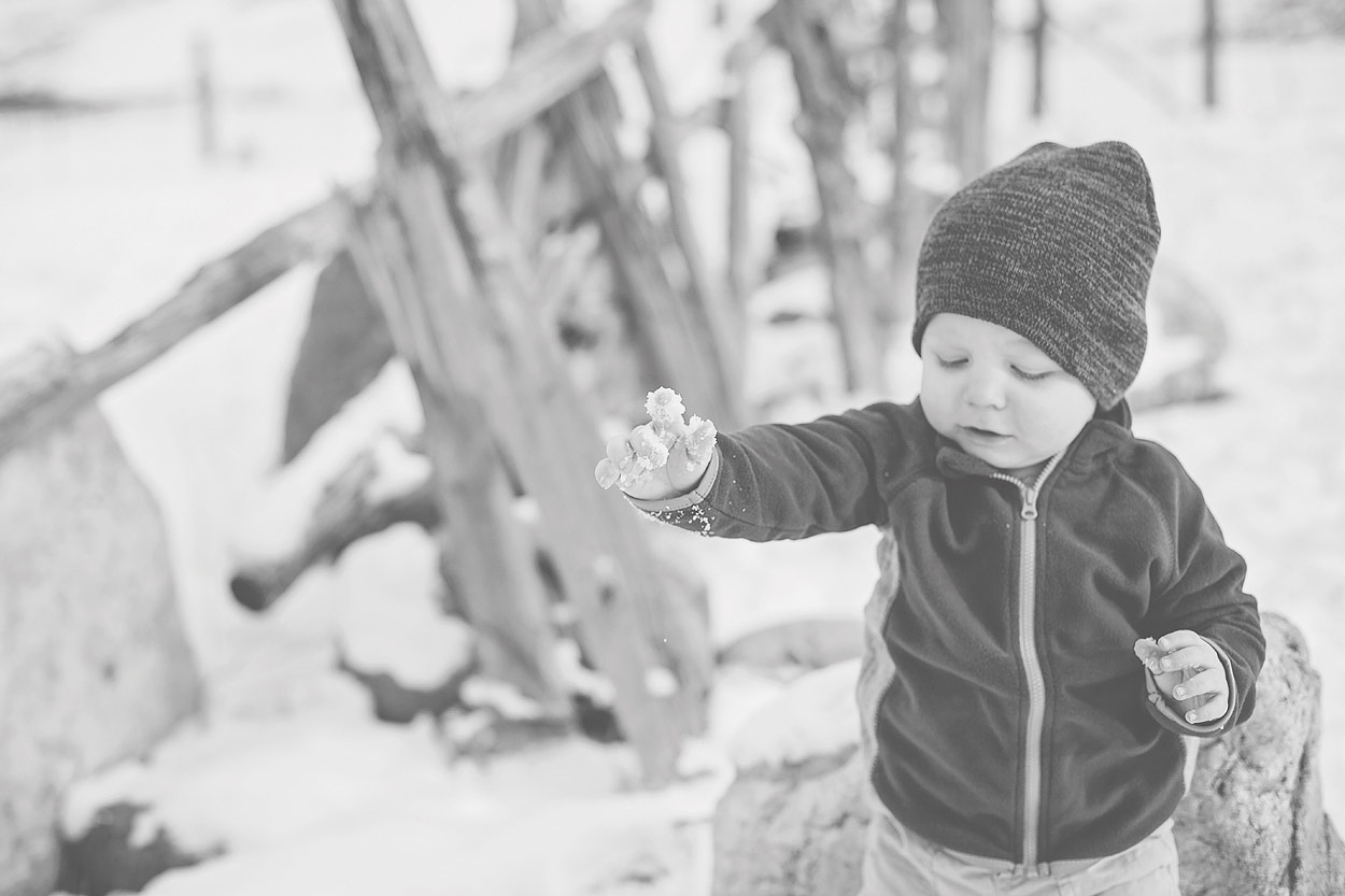 LoganUtahFamilyPhotography-HeidiRandallStudios-14.jpg