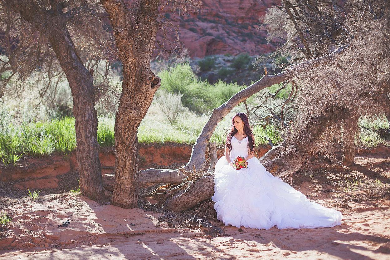 StGeorgeUtahStyledBridalPhotography-HeidiRandallStudios-Renee+Darren-9.jpg