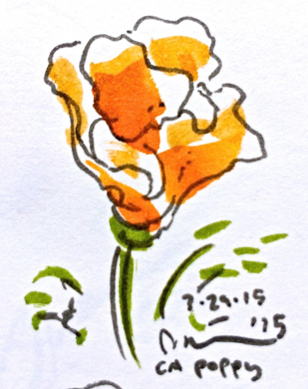 Oakdale flowers.jpg