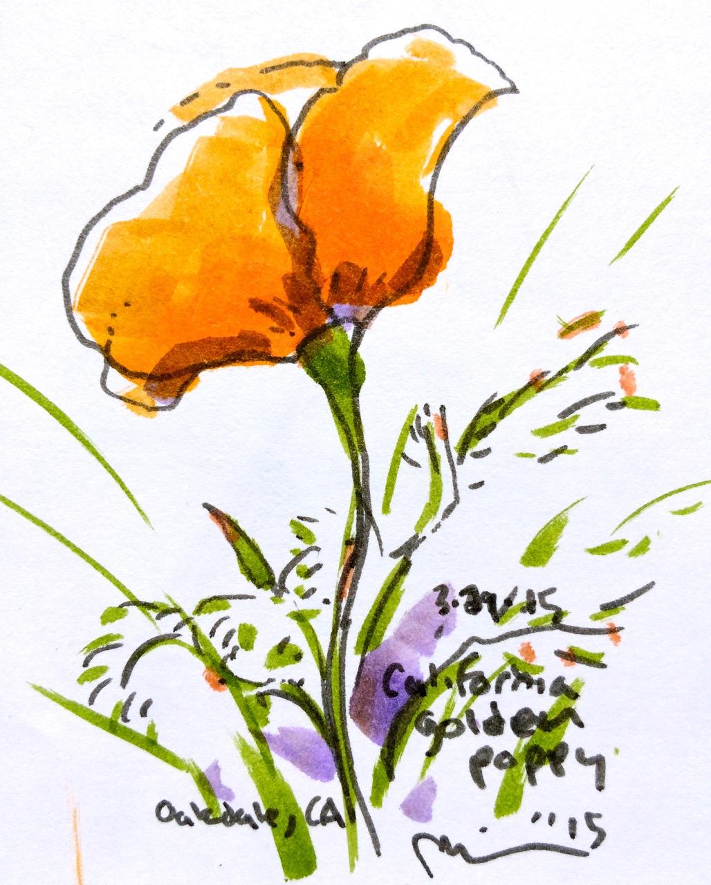 Oakdale flowers2.jpg