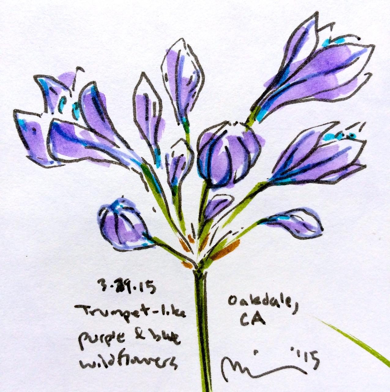 Oakdale flowers3.jpg
