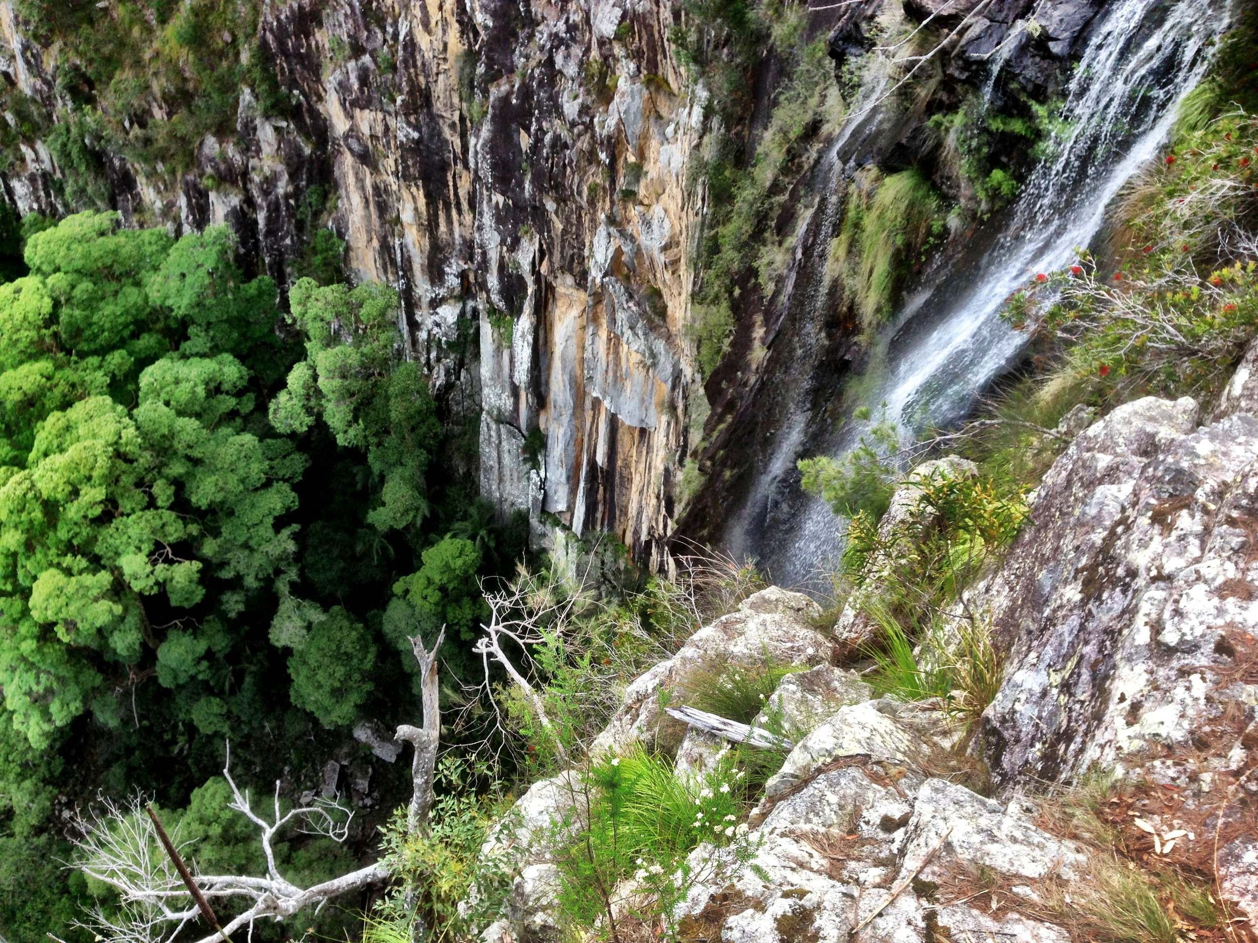 Worth the short drive from Nimbin to see the 100m hight Fitzroy Falls.