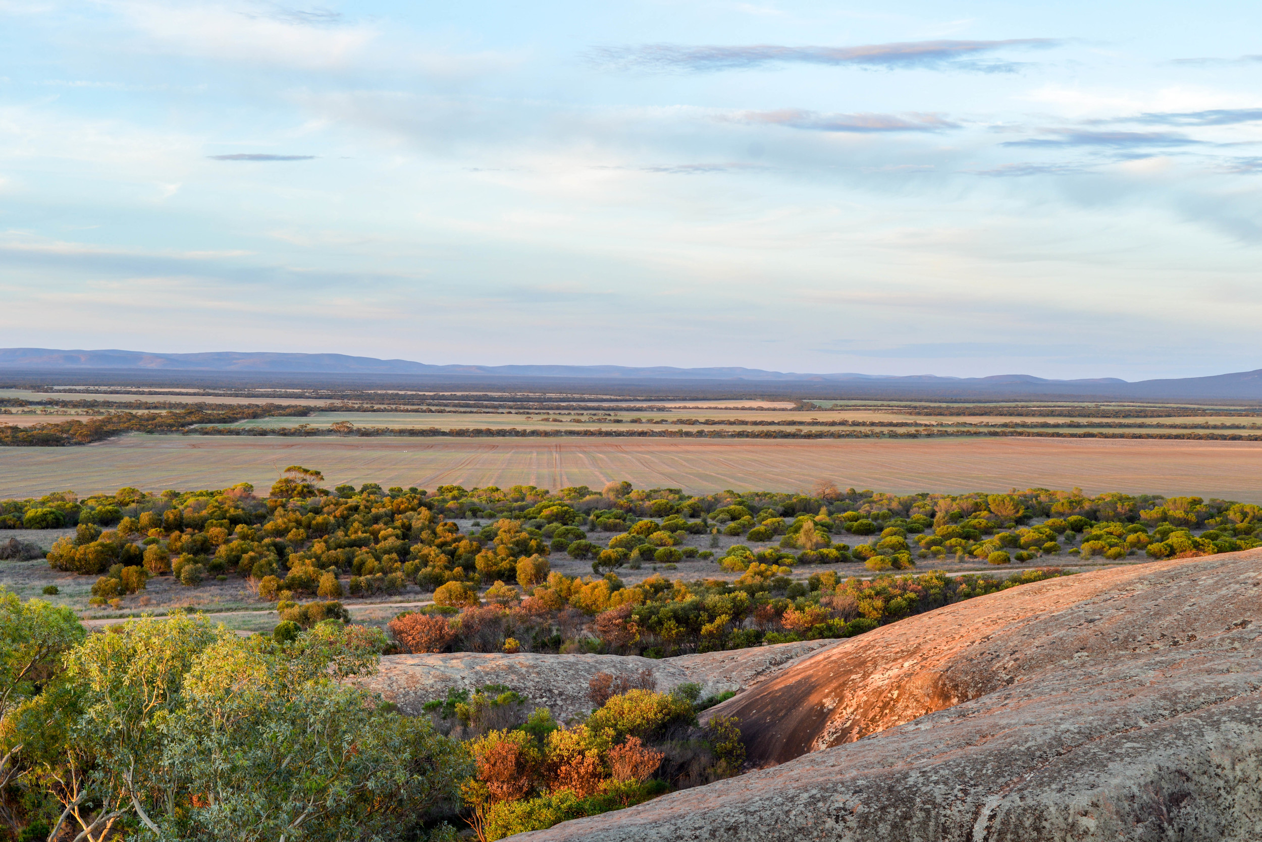 The view of Gawler Ranges from Pildappa Rock.