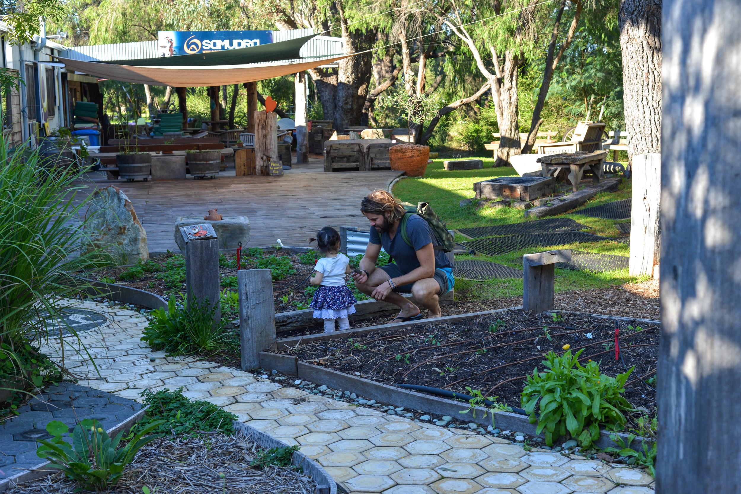 Jonny & Bo picking fresh herbs from Samudra's garden.